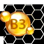 烟酰胺(富含维他命B3)