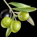 橄榄油精华